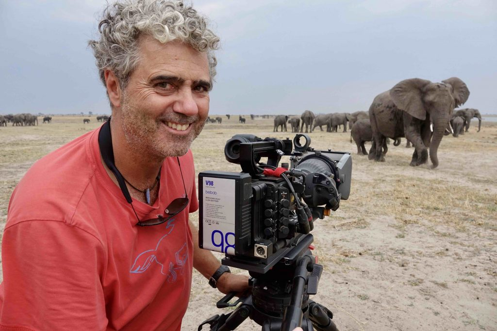 klein-jens-westphalen-elefantenherde-chobe-004-zorillafilm-grospitz-westphalen